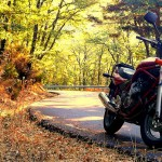 motorcycle autumn